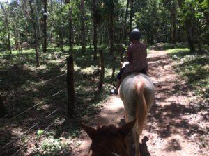 Kiskadee Trail