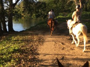 Full Day Horse Riding Tour